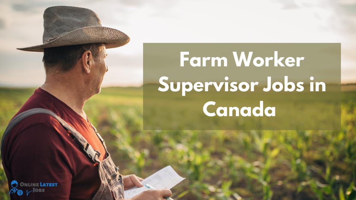 Farm Worker Supervisor Jobs In Canada